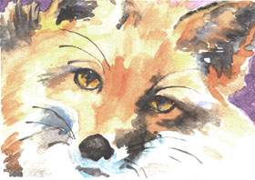 "click to order ""Fox Portrait"""