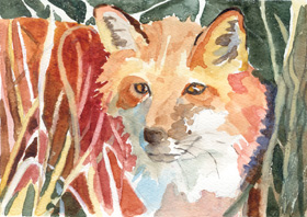 "click to order ""Fox in the Grass"""